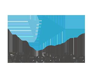 Video Scribe