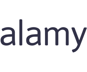 Alamy Coupons & Promo Codes